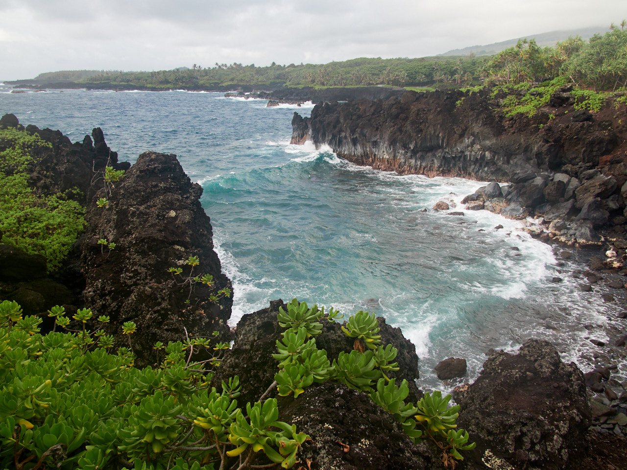 One of the Black Sand Beaches within the Park Boundaries